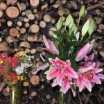 flowers7-11